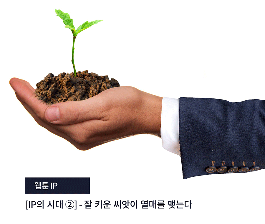 [IP의 시대 ②] - 잘 키운 씨앗이 열매를 맺는다