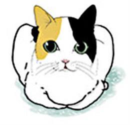 빵굽는고양이
